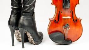 Violinista Foto de Stock Royalty Free