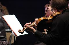 Violinista al concerto Fotografie Stock