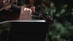 Violinista bonito joven de la muchacha que toca el violín, como parte de un grupo almacen de metraje de vídeo