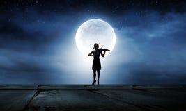 Violinista da mulher Fotos de Stock