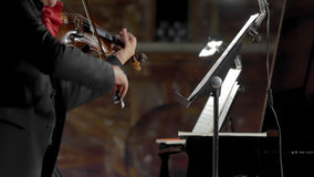 Violinista del solista Imagen de archivo libre de regalías