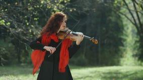 Violinista en la muchacha del bosque del otoño que juega en el violín en naturaleza almacen de metraje de vídeo