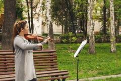Violinista fêmea Foto de Stock