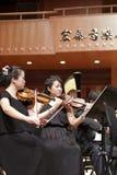 Violinista fêmea Imagem de Stock