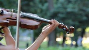 Violinista que toca el violín en el parque almacen de video