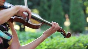 Violinista que toca el violín en el parque metrajes
