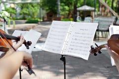 Violinista su cerimonia di cerimonia nuziale Fotografia Stock Libera da Diritti