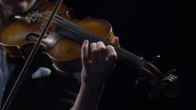 Violinisten rymmer en pilbåge och lekar Svart bakgrund close upp stock video