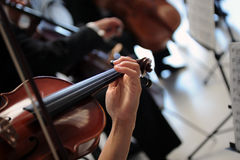 violinister Royaltyfri Foto