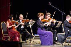 Violinisti immagini stock
