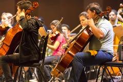 Violinisti in orchestra classica sul lavoro a Manaus, Brasile fotografia stock libera da diritti