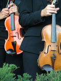 Violinists. Orchestra violinists Stock Photo
