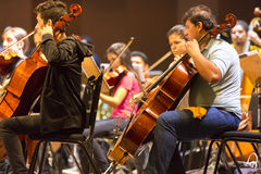 Violinists in classical orchestra at work in Manaus, Brazil. Orchestra with music school students repeating their daily musical session at the Amazon Theatre Royalty Free Stock Photo