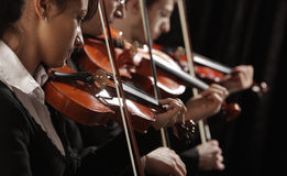 Violinists at concert. Symphony music, violinists at concert Stock Photos