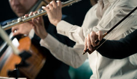 Violinists performing, hands close-up Stock Images