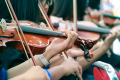 Violinists recital. Hands of violinists playing violins outdoor Stock Images