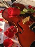 Violino Fotos de Stock Royalty Free