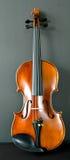Violino Fotografia de Stock