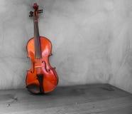 Violino Immagini Stock