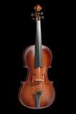 Violino ilustração royalty free