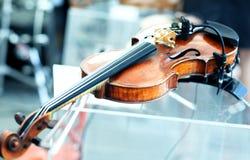 Violino basso in profondità del campo Immagini Stock
