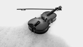 Violino in bianco e nero Immagini Stock