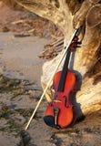 Violino che si appoggia su un vecchio ceppo Fotografia Stock