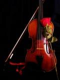 Violino con Rosa ed il nastro Immagini Stock