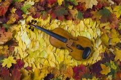 Violino contra o contexto da folha do outono Imagens de Stock