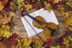 Violino contra o contexto da folha do outono Fotografia de Stock