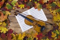 Violino contra o contexto da folha do outono Imagem de Stock Royalty Free