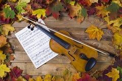 Violino contra o contexto da folha do outono Foto de Stock Royalty Free