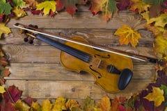 Violino contra o contexto da folha do outono Imagem de Stock