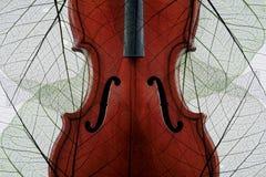 Violino coperto di fogli di autunno fotografie stock libere da diritti