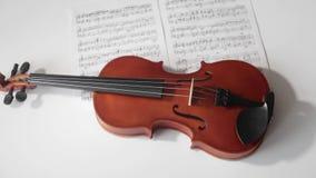 Violino de Brown com notas musicais em um fundo branco que gira e que filtra a metragem Conceito da apresentação video estoque