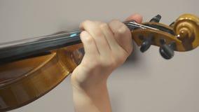 Violino de IL del suona del che de Bambina almacen de video