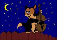 Violino do jogo do gato na cerca Foto de Stock