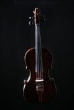 Violino dos instrumentos da música clássica imagens de stock