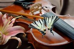 Violino e borboleta borboleta na curva Swallowtail escasso Swallowtail da vela fotografia de stock