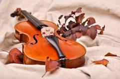 Violino e foglie di autunno Fotografia Stock