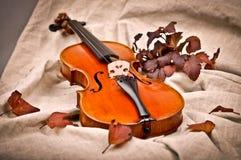 Violino e foglie di autunno Immagini Stock