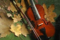 Violino e foglie di autunno Immagini Stock Libere da Diritti