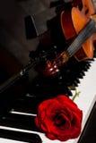 Violino e piano imagem de stock