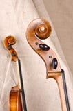 Violino e violoncello Immagini Stock