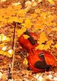 Violino ed arco in autunno Fotografia Stock