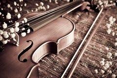 Violino ed arco con il gypsophelia sul panno tessuto Immagine Stock