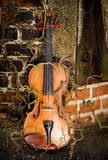 Violino incantato Fotografie Stock