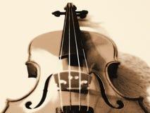 Violino stilizzato nella seppia Immagine Stock