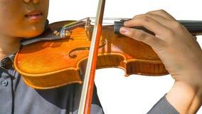 Violino sul musicista fotografie stock libere da diritti