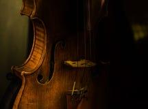Violino a Venezia Immagine Stock